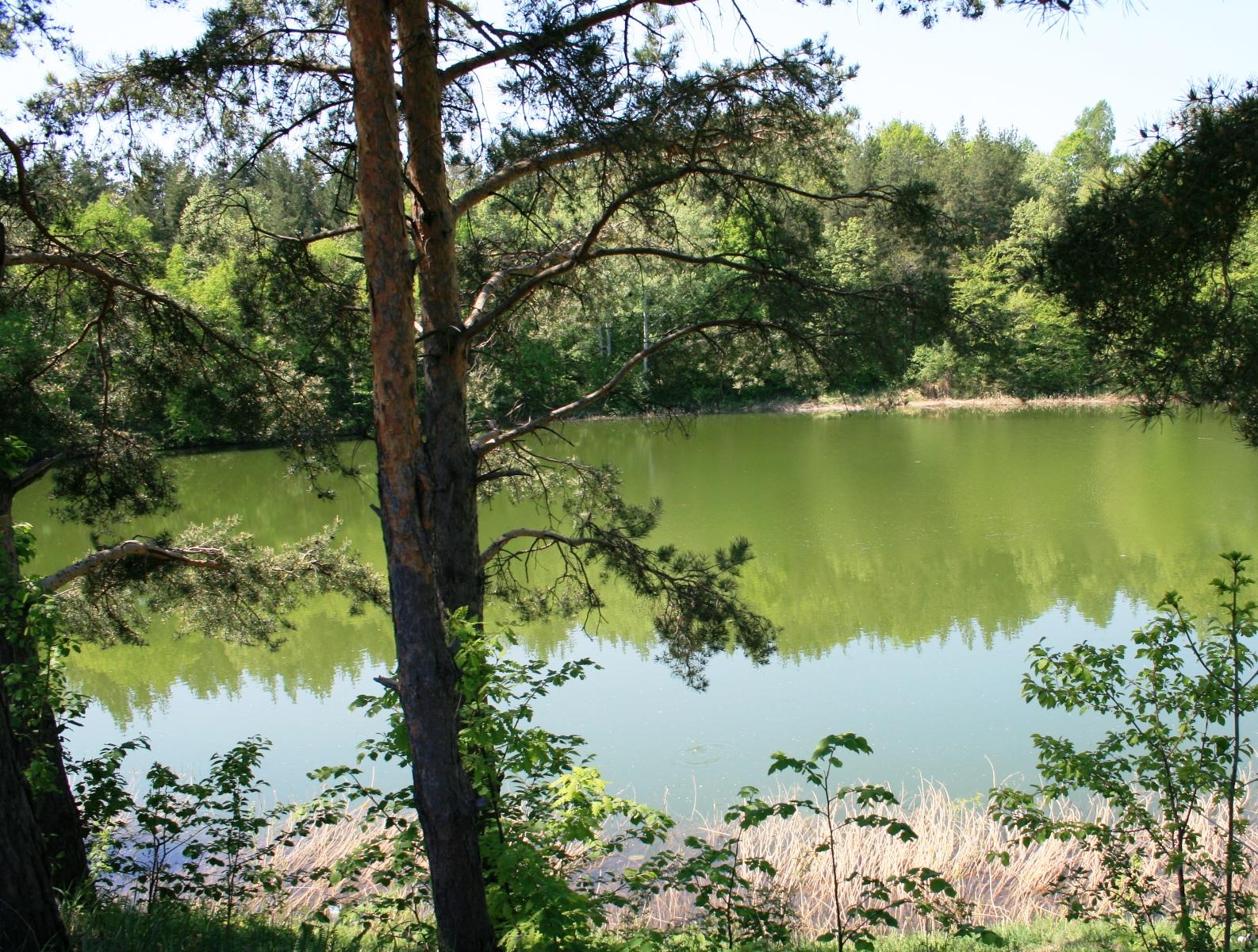 Lacul Meledic 7