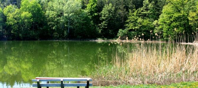 Lacul Meledic – apa dulce din masivul de sare