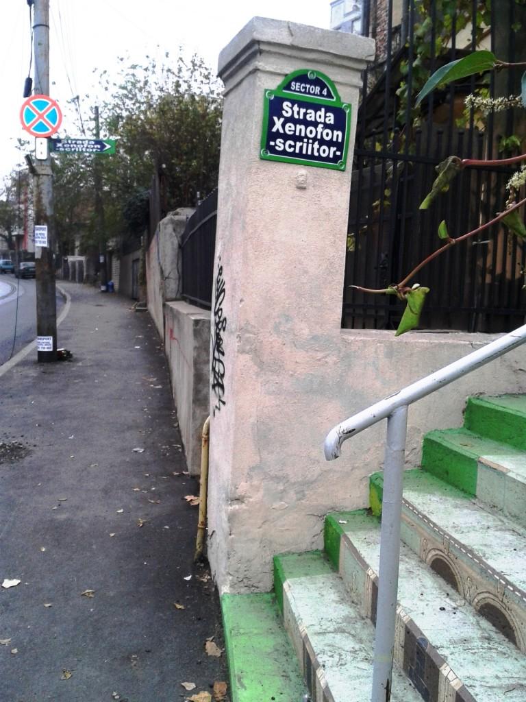 stradă în trepte 1 768x1024 - Singura stradă în trepte din București a prins culoare!