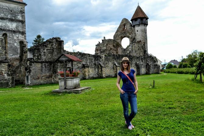 Mănăstirea Cârța 101 - Mănăstirea Cârța - singura ruină cisterciană din România