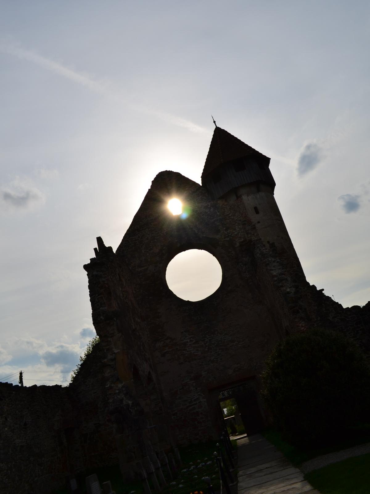Mănăstirea Cârța 6 - Mănăstirea Cârța - singura ruină cisterciană din România