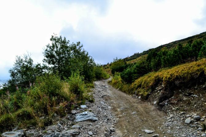 Munții Rodnei 5 - Cum se vede România de pe acoperișul Carpaților Orientali?