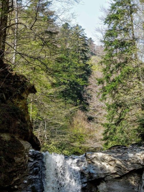 Cascada Caşoca 6 - Cascada Caşoca – sunetul apei din Masivul Podul Calului