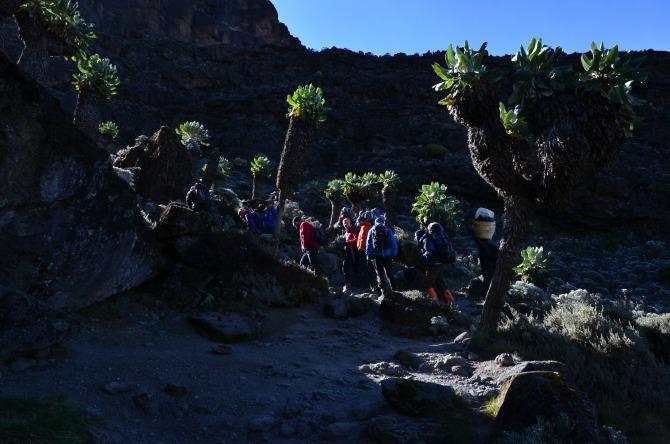 """Kilimanjaro 7 - Interviu cu Andrei Rădulescu - """"Un strop de fericire"""" pe Kilimanjaro"""