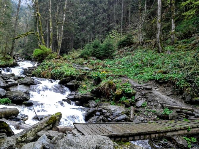 Cabana Valea Sâmbetei 7 - Cabana Valea Sâmbetei - traseu de primăvară