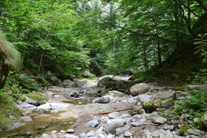 Valea lui Stan 21 - Valea lui Stan - un circuit plin de adrenalină
