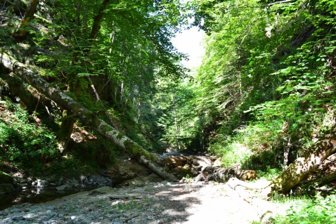 Valea lui Stan 3 - Valea lui Stan - un circuit plin de adrenalină
