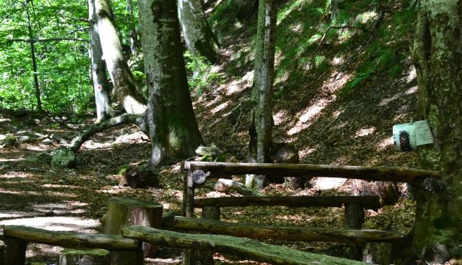 Valea lui Stan 7 - Valea lui Stan - un circuit plin de adrenalină