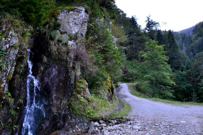 DSC 0172 - Vârful Negoiu - o drumeţie de neuitat în Făgăraş