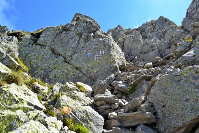 DSC 0493 - Vârful Negoiu - o drumeţie de neuitat în Făgăraş