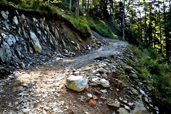 DSC 0862 - Vârful Negoiu - o drumeţie de neuitat în Făgăraş