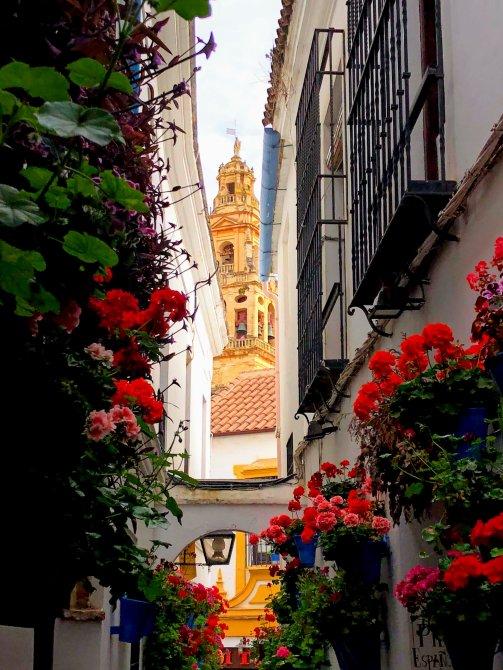 Cordoba 2 - Un vis numit Andalucia