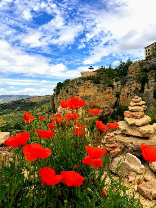Ronda 1 - Un vis numit Andalucia
