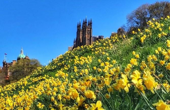 Edinburgh 15 - Edinburgh - prima călătorie în Scoţia