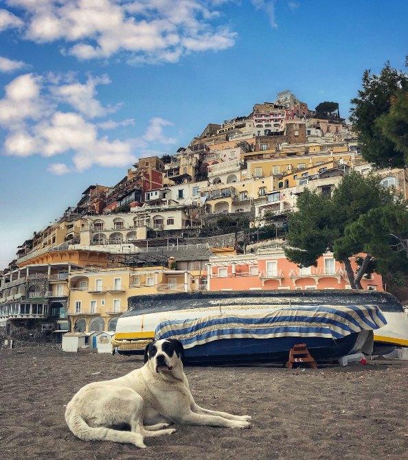 Positano 7 - Coasta Amalfi - paradis cu mireasmă de lămâie
