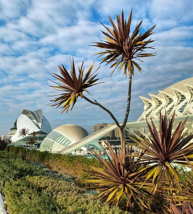 Valencia City of Arts and Sciences 3 scaled e1588530682460 - Valencia - itinerariu pentru 36 de ore